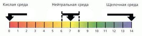наглядная картинка кислотности
